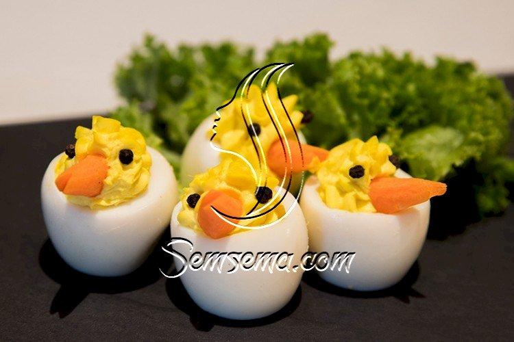 صيصان البيض